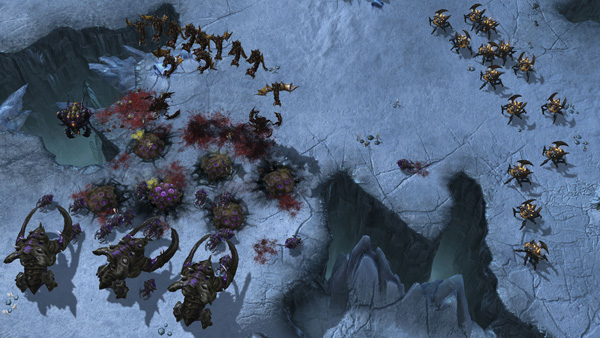 Heart of the Swarm 03