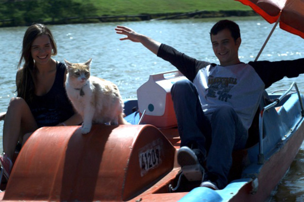 Cats on a Pedal Boat