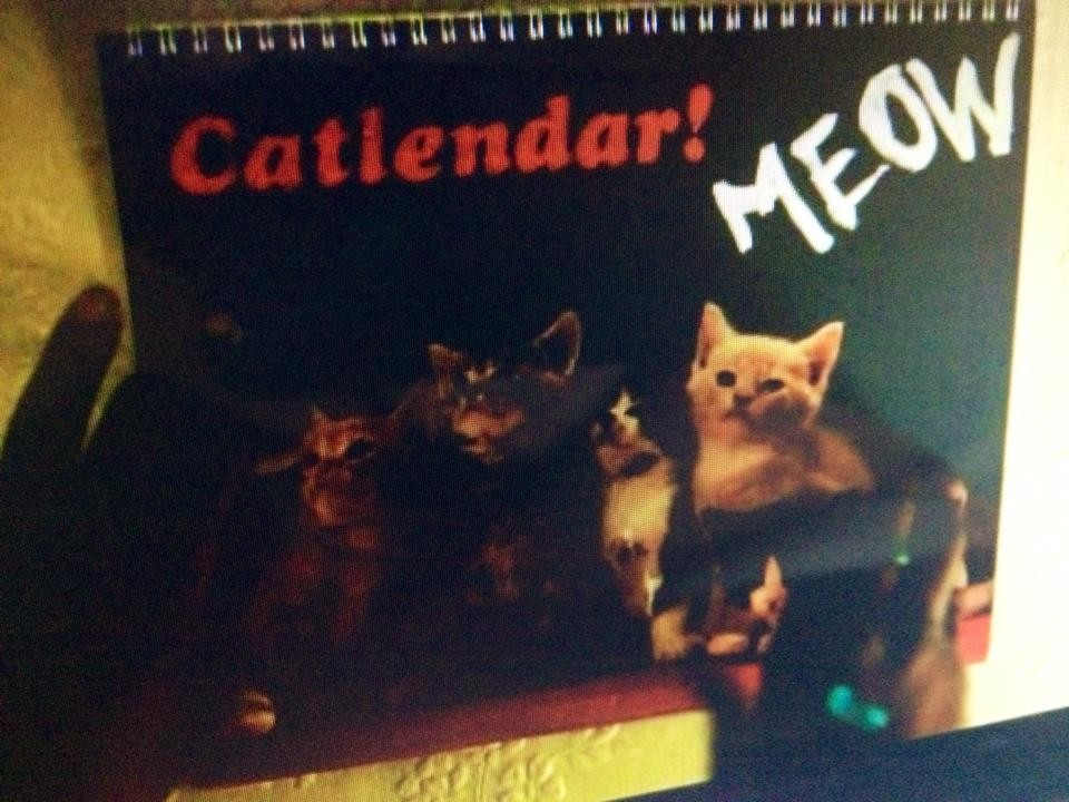 Girls - Season 3 Episode 1 - Cat Calendar