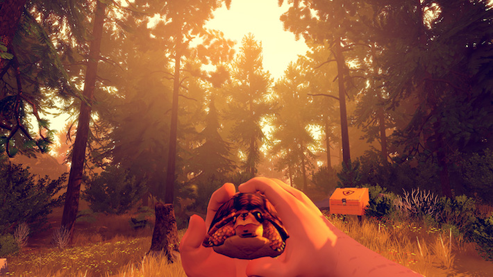 firewatch-turtle