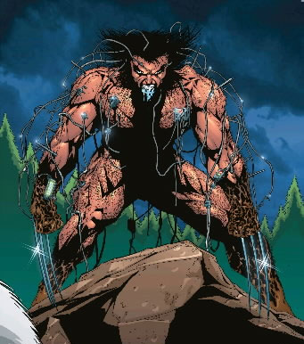 Wolverine just after escaping from the Weapon X Program