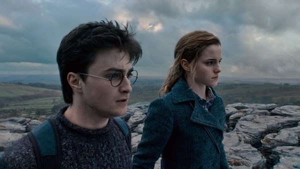 Harry Potter and the Deathly Hallows: Part 1 - Daniel Radcliffe and Emma Watson