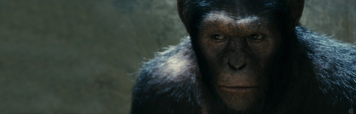 Rise of the Planet of the Apes - Featured