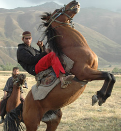 Hot Docs - Buzkashi! - F2