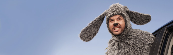 Wilfred Season One - Featured