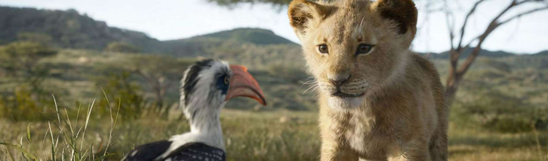 The-Lion-King-Simba-and-Zazu-Feature