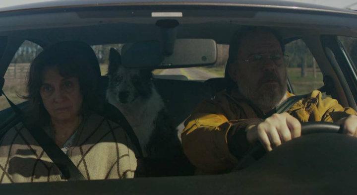 CUFF-2020-A-Dogs-Death